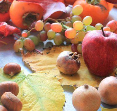 frutta-fetta-fico-bologna8 (9)