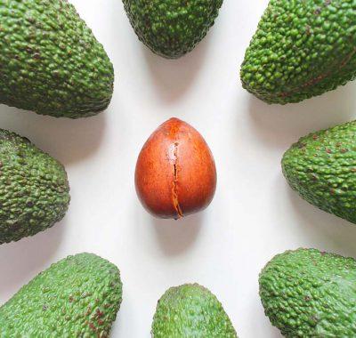 frutta-fetta-fico-bologna6 (1)